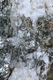 Minerali misti Fotografia Stock Libera da Diritti