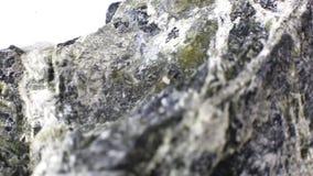 Mineralisk asbestmakrovideo arkivfilmer
