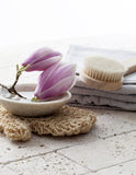 Mineralisk kopp med stenar och blomman för zeninställning Fotografering för Bildbyråer