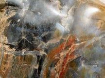 Mineralisk modell Royaltyfri Bild
