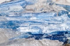 Mineralisk stenKyanite för makro en vit bakgrund Arkivbild