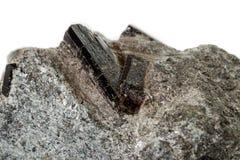 Mineralisk stenschorl för makro, svart tourmaline på vit bakgrund royaltyfria foton