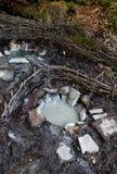 mineraliskt källvatten arkivbilder