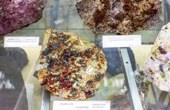 Mineralogy museum Stock Photo