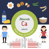 Minerals Ca infographic. Minerals Ca and vector set of minerals Ca rich foods. Healthy lifestyle and diet concept. Daily doze of minerals Ca Royalty Free Stock Images