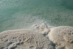 Minerals of Dead Sea. Hydrochloric outgrowths on coast of the Dead Sea Stock Photography