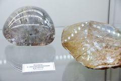 Minerals on display at the museum, Exhibits of the Museum named after Vernadsky in Moscow stock image