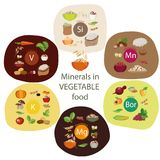 Minerals In Plant Foods Royalty Free Stock Photography