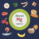 Minerals Mg infographic. Minerals Mg and vector set of minerals Mg rich foods. Healthy lifestyle and diet concept. Magnesium Royalty Free Stock Images