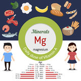 Minerals Mg infographic. Minerals Mg and vector set of minerals Mg rich foods. Healthy lifestyle and diet concept. Magnesium. Daily doze of minerals Mg Royalty Free Stock Photo