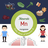 Minerals Mn infographic. Minerals Mn and vector set of minerals Mn rich foods. Healthy lifestyle and diet concept. Manganese. Daily doze of minerals Mn Royalty Free Stock Image