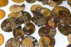Minerals, natural color quartz Royalty Free Stock Photo