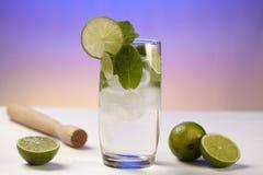 Mineralvatten med limefrukt, iskuber och pepparmint spricker ut Royaltyfri Fotografi