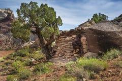 Minero Cabin en la mina abandonada del radio en Utah Foto de archivo libre de regalías