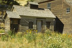 Miners cabin. Wild flowers and a rustic old miners cabin at Silver Plume, Colorado Stock Photo