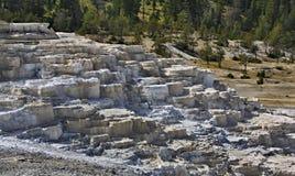 Minerva taras w Yellowstone parku narodowym, usa Zdjęcia Stock