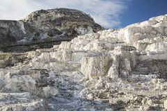 Minerva tarasu mamutowe gorące wiosny Yellowstone Obrazy Royalty Free