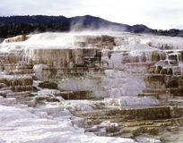 MINERVA TERRACE 3. Mammath Hot Springs  in Yellowstone National Park, Wyoming Stock Images