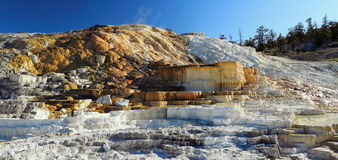 Minerva Terraces at Mammoth Hot Springs, Yellowstone National Park, Wyoming. Evening light shines on the panorama of the lower terraces from Minerva to Cleopatra Royalty Free Stock Photo