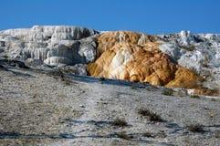 Minerva Terrasse bei Mammoth Hot Springs Lizenzfreies Stockbild