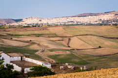 Minervino Murge, Puglia. Landscape and farm stock image