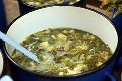 Minestra acida dell'insalata transylvanian tradizionale Fotografia Stock