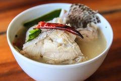 Minestra calda ed acida con il pesce immagine stock libera da diritti