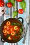 Minestra casalinga dei tortellini con il pomodoro, il basilico e gli spinaci Fotografia Stock Libera da Diritti
