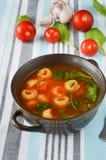 Minestra casalinga dei tortellini con il pomodoro, il basilico e gli spinaci Fotografia Stock