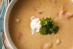 Minestra casalinga della zuppa di aragosta fotografia stock libera da diritti