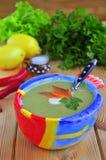 Minestra crema di verdure con un salmone Immagine Stock