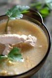 Minestra cremosa con il pollo Fotografie Stock