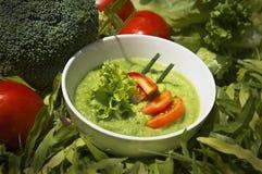 Minestra cremosa dei broccoli sul piatto Fotografie Stock Libere da Diritti