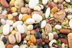 Minestra dei legumi Fotografia Stock Libera da Diritti