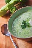 Minestra del broccolo Immagine Stock
