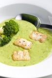 Minestra del broccolo Fotografia Stock