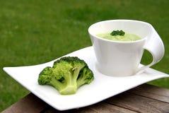 Minestra del broccolo Fotografie Stock Libere da Diritti