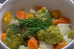 Minestra del cavolfiore dei broccoli Fotografie Stock