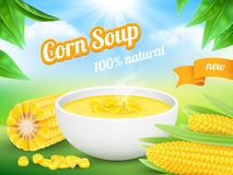 Minestra del cereale Pubblicità del modello di vettore del granoturco dolce del prodotto dello spuntino del manifesto illustrazione di stock