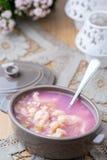 Minestra del dessert del rabarbaro con gli gnocchi del formaggio Immagini Stock Libere da Diritti