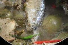 Minestra del pomodoro Immagini Stock