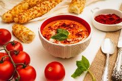 Minestra del pomodoro con basilico, paprica rossa, panna da montare ed i grissini immagini stock libere da diritti