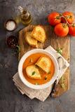 Minestra del pomodoro con i panini arrostiti del formaggio fotografia stock