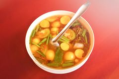 Minestra del Tom Yum immagine stock