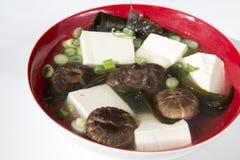 Minestra deliziosa del tofu Fotografia Stock