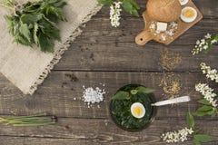 Minestra dell'ortica della primavera fotografie stock libere da diritti