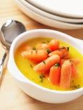 Minestra della carota Immagini Stock