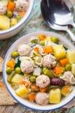 Minestra della polpetta con le verdure Immagini Stock