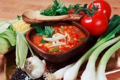 Minestra della tortiglia del pollo con la verdura fresca Immagine Stock Libera da Diritti