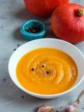 Minestra della zucca con aglio e pepe e zucche organiche, spazio della copia Alimento stagionale di autunno fotografia stock libera da diritti